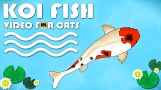 CAT GAMES FISH - Catching Koi Fish. Video for Cats to Watch.