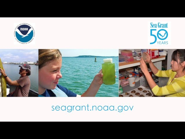 Sea Grant: Science Serving America's Coasts