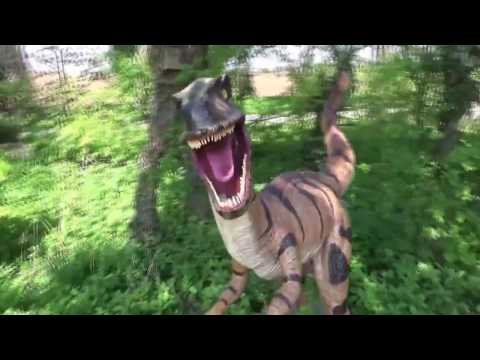 Sheffield Tropical Butterfly House, Wildlife & Falconry Centre - Full Walkthrough