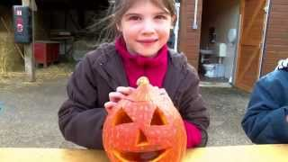 Halloween : atelier citrouille à l'Île-des-Loisirs