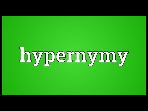 Hypernymy Meaning