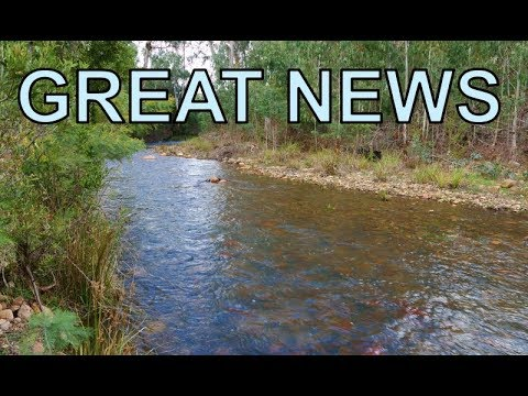 Trout fishing, excellent news for season opening