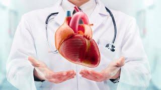 Arteria pequeña de pinzas