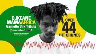Garnett Silk Mama Africa Tribute 2015