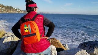 HskyArt I got a Surfing Pineapple on my new Fendi orange backpack Malibu AtLA 2019