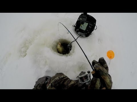 Crappie Ice Fishing Secrets- Keep Searching To Find Schools Of Crappies…