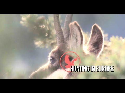 Hunting In Europe