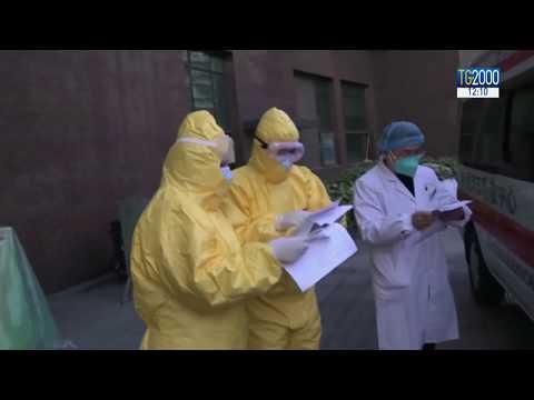 Coronavirus, stabili i due cinesi allo Spallanzani. A Verona ricoverata dipendente albergo