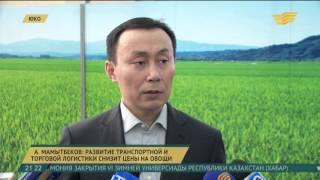 Развитие транспортной и торговой логистики снизит цены на овощи - А.Мамытбеков(, 2016-02-17T16:13:41.000Z)