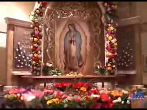 Virgen De Guadalupe Feast Day Celebration
