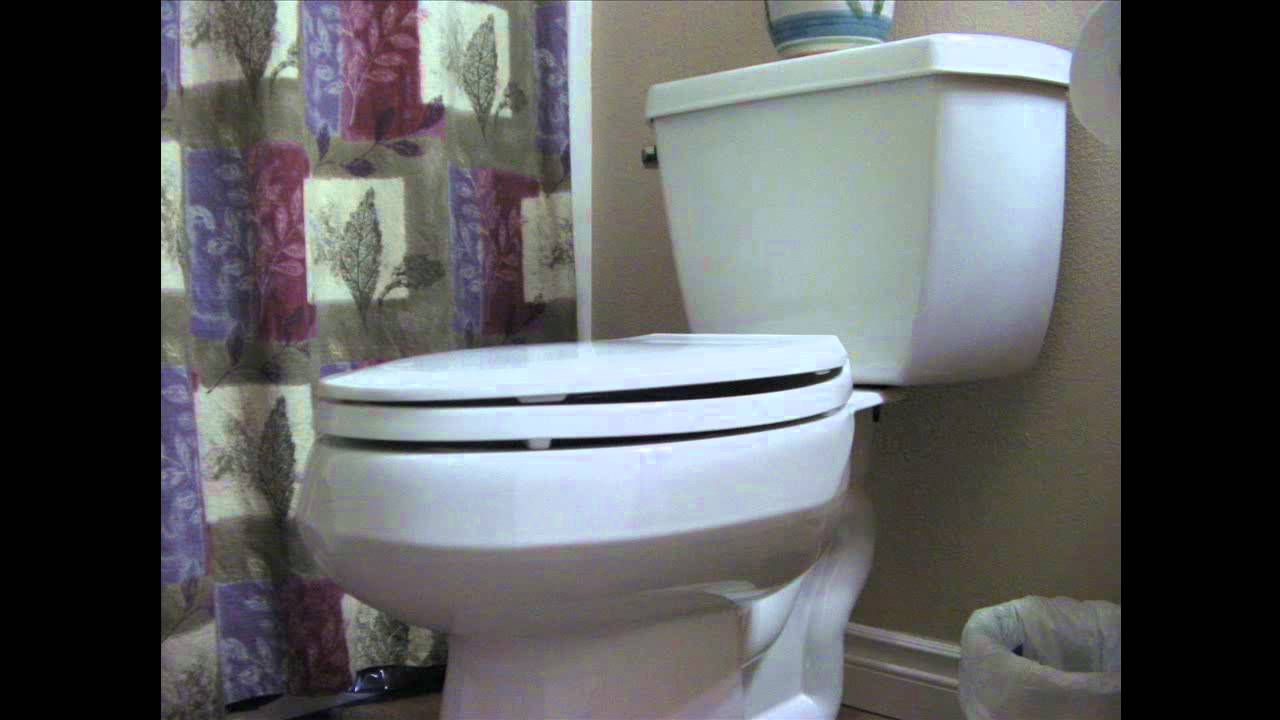 Toilet Flush Sound Effect - YouTube