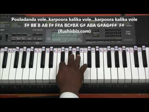 Nannu Dhochukundhuvate............ (Piano Tutorials)