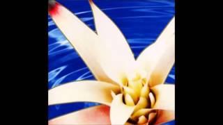 Track from : SAI (WINN-82073, 2001) http://www.discogs.com/Rovo-Sai...