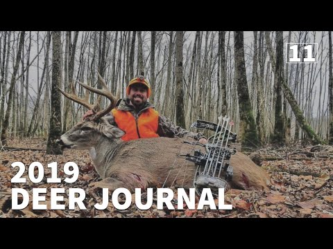 CRAZY HUNT...KENTUCKY PUBLIC BUCK GOES DOWN!!! - 2019 Deer Journal | EP.#11 | OnX Hunt App PAID OFF