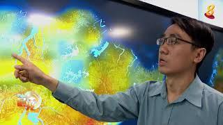 晨光|狮城气候行动:新加坡城市热岛效应 该怎么舒缓?