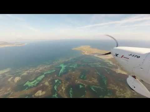 Flinders Island to Cape Portland via Cape Barren Island