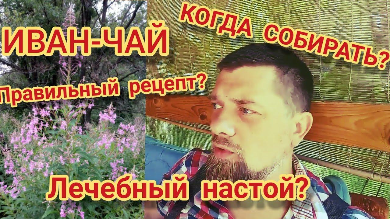 Иван чай рецепт от простатита таблетки от простатита на букву ф