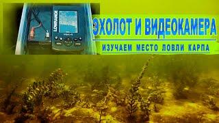 Подводные видеокадры Белого озера. Ловля карпа.