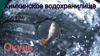 Химкинское водохранилище Рыбалка на мормышку окунь первый лёд