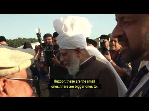 Inspection - Jalsa Salana UK 2019