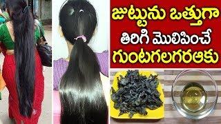 Grow Hair Fast with Home Made Hair Oil I Bhringraj (Guntagalagara Aku) I Everything in Telugu