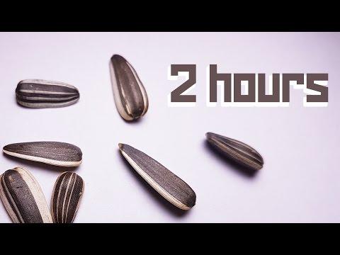 #SemechkiASMR - 2 hour session