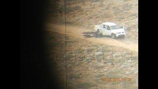 FALTER: Massaker am Golan