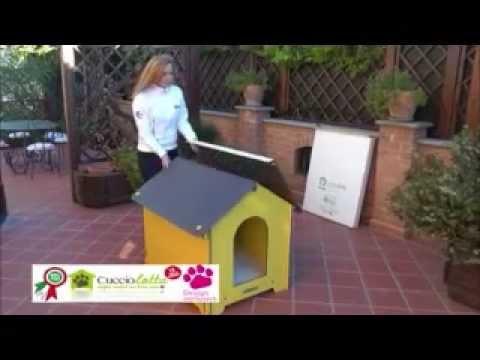 Cucce per cani da esterno cucciolotta youtube for Cucce per cani da esterno coibentate