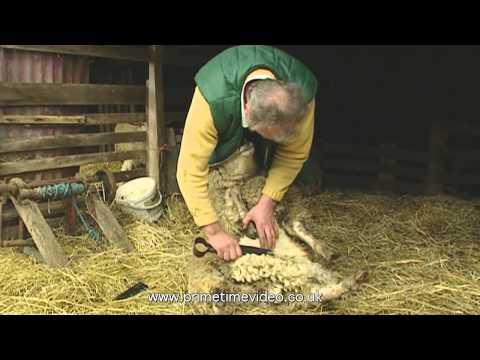 Lincolnshire Farmer, Lincolnshire Dialect
