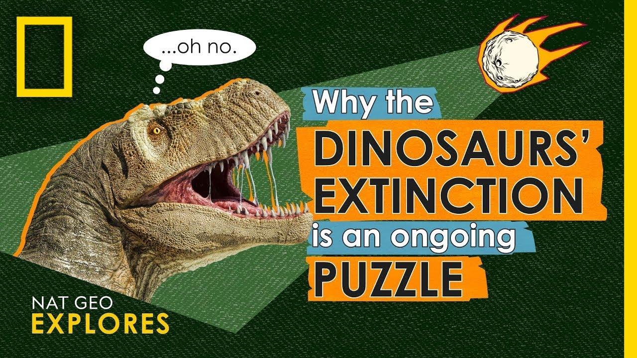 Dinosaurs   TheSchoolRun [ 720 x 1280 Pixel ]