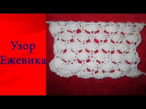 Ежевика Бжезина - саженцы, купить, описание, посадка
