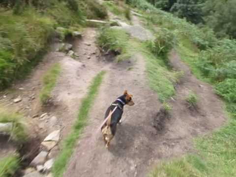 Libby in Bronte Country