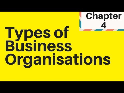 1.4 Types Of Business Organisations IGCSE Business Studies