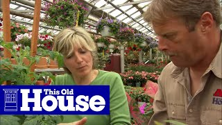 How To Create A Container Garden - This Old House