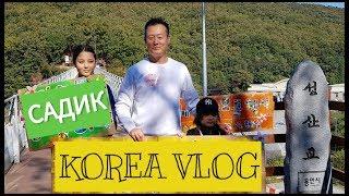 Корейский садик снова умиляет. Семейное мероприятие/ KOREA/ VLOG/