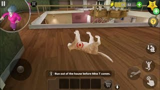Scary Teacher 3D Version 5.4.1 | Nick Saves The Cat Again