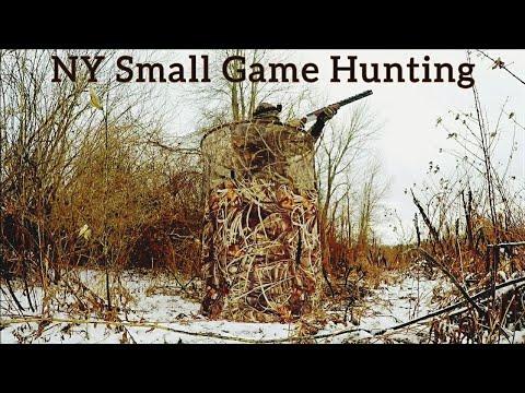 NY Small Game Hunting 2020-21 Season Coming Soon