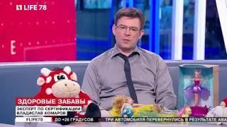 видео СЕРТИФИКАЦИЯ ИГРУШЕК