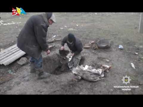 ТРК НИС-ТВ: Объектив 20 03 18Убийство сожительницы пенсионером и расчлененка на ферме