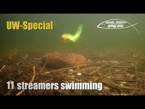 11 Streamer Flies - Swimming Under Water
