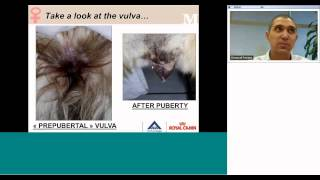 Pro Canada Webinar  Basics In Canine Reproduction Part I