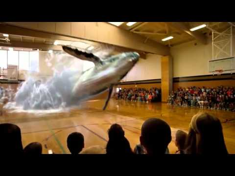 Facebook Donald J  Potts   PROJECT BLUE BEAM WHALE HOLOGRAM IN SCHOOL