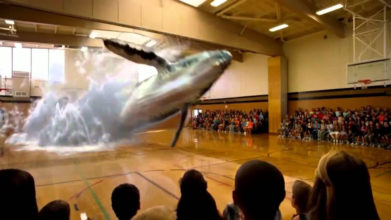 Facebook Donald J Potts Project Blue Beam Whale Hologram