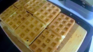 Waffles! - Large Batch (grain/gluten/dairy/coconut-free)