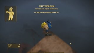 Fallout4 Quick Tip Agility Bobblehead
