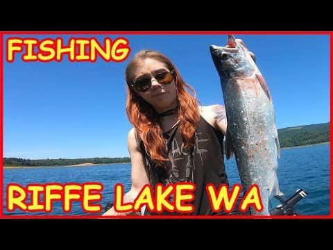Coho Salmon Fishing Video Riffe Lake WA