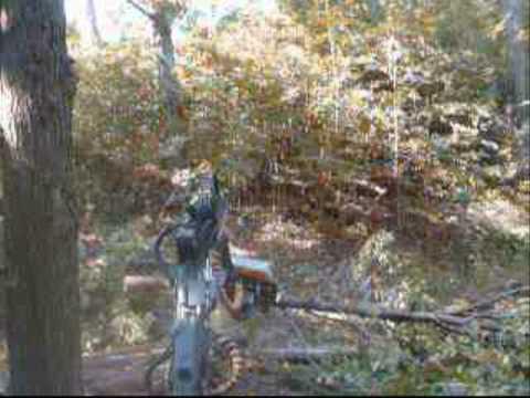 Michigan forestry management - Northern hardwood thinning