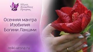 Осенняя мантра ИЗОБИЛИЯ Богини Лакшми | Активация удачи и процветания | Рейки богатство