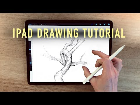 IPad drawing tutorial - How to draw branches thumbnail
