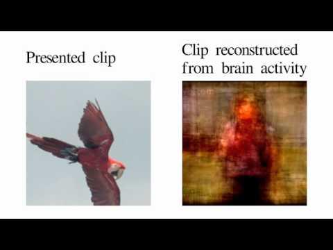 Movie reconstruction from human brain activity - YouTube